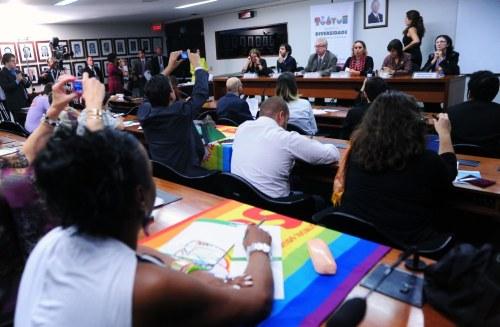 Movimento LGBT terá que ter o dobro de disposição para atuar na CDHM em 2013 (Foto: Alexandra Martins/Câmara)